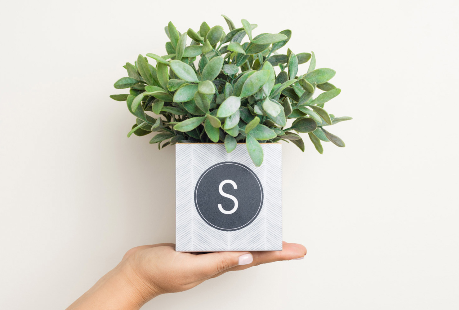 gifts for mom monogram plant