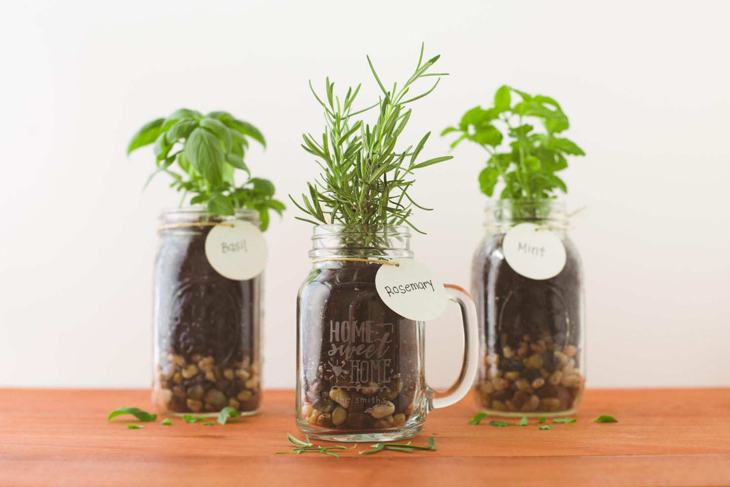 herb garden inside mason jars labeled basil, rosemary and mint