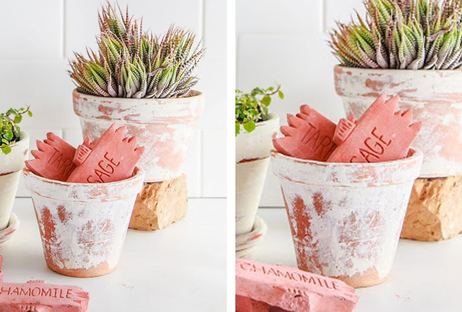 terracotta pots serve as decor