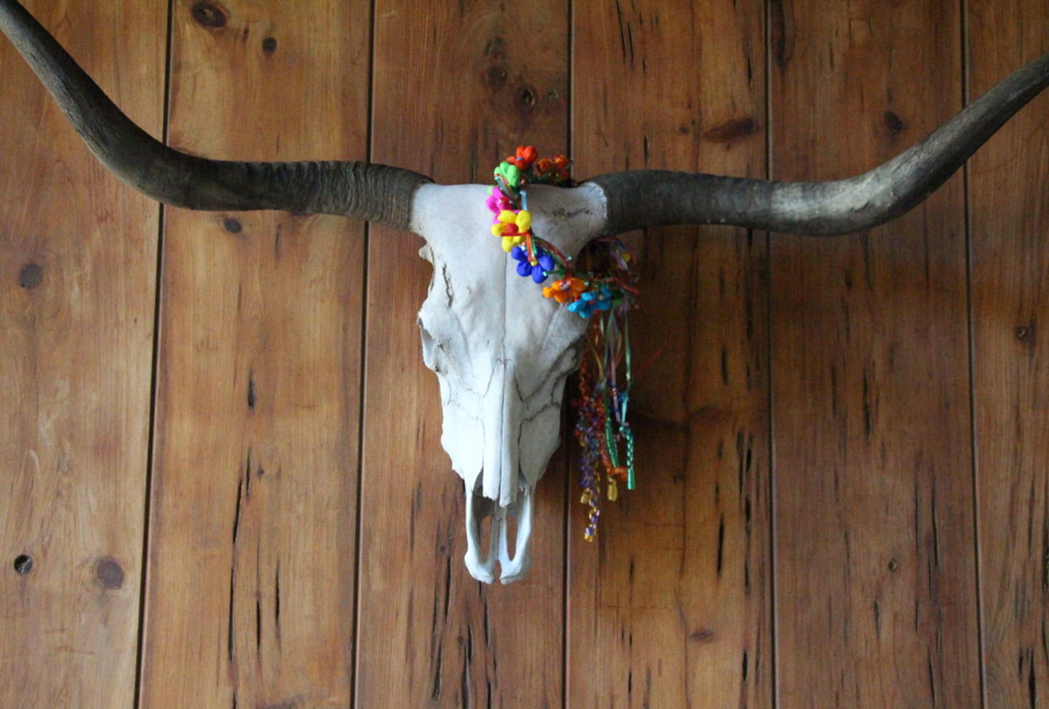 Deer skull and antlers wall hanging with flower crown