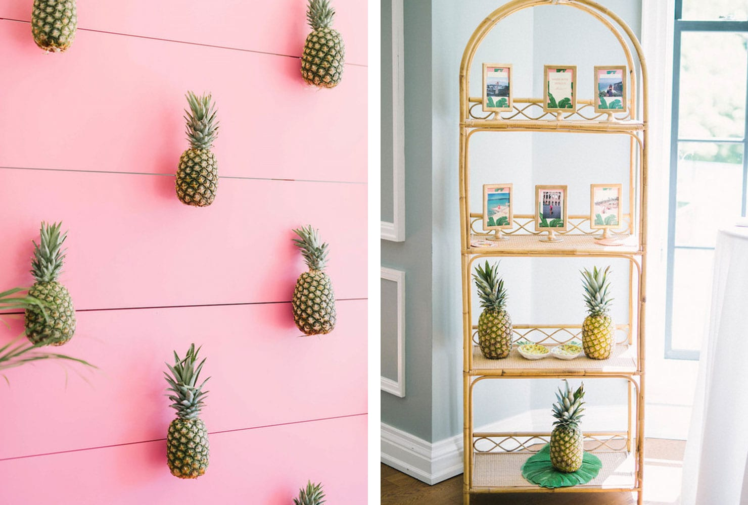 Pineapples against a pink wall and on tropical bookshelf
