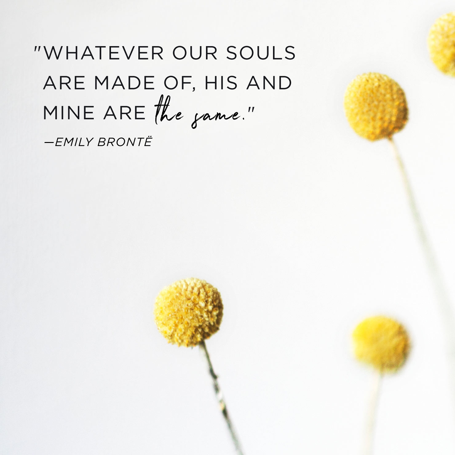 Quote above background image: Whatever our souls are made of, his and mine are the same. - Emily Bronte