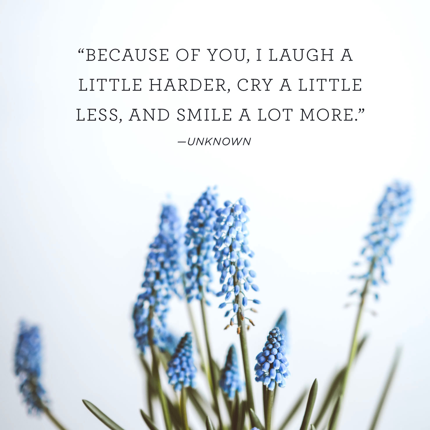 Quote above background image: 'Because of you, I laugh a little harder, cry a little less, and smile a lot more.' - Unknown