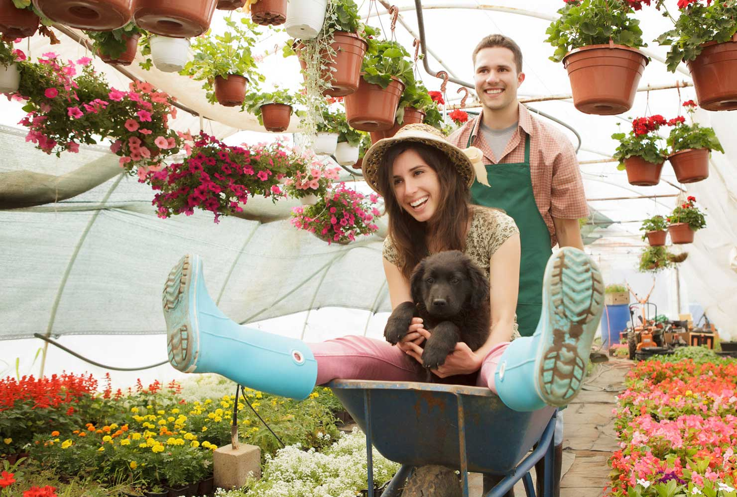 couple playing in a wheelbarrow at the plant nursery