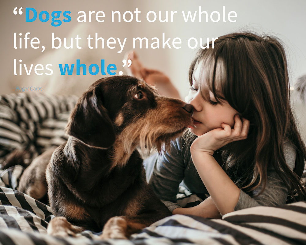 puppy quotes and cute dog quote