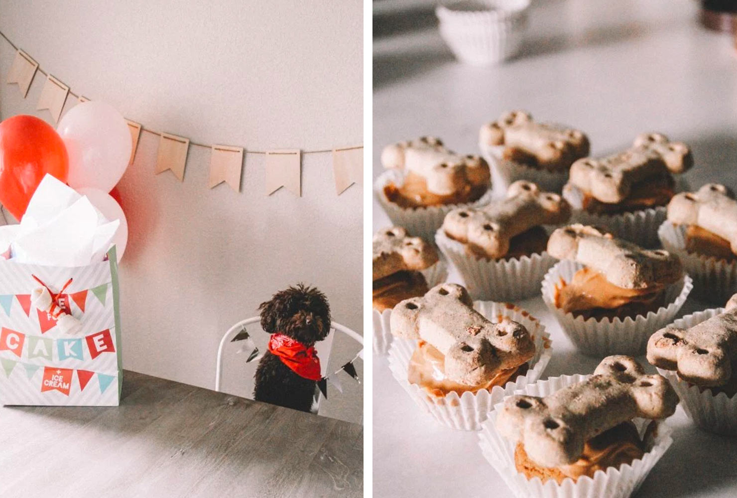 dog birthday party ideas party decorations