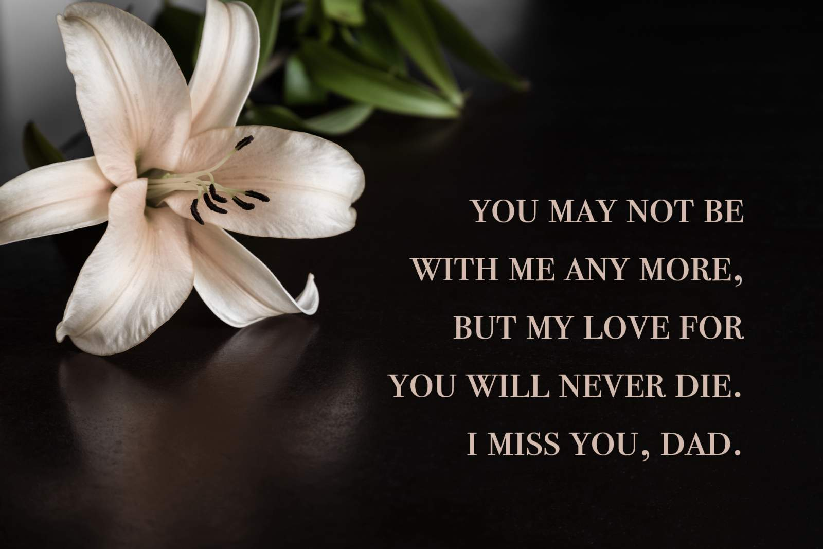 flowers with a miss you dad quote overlay