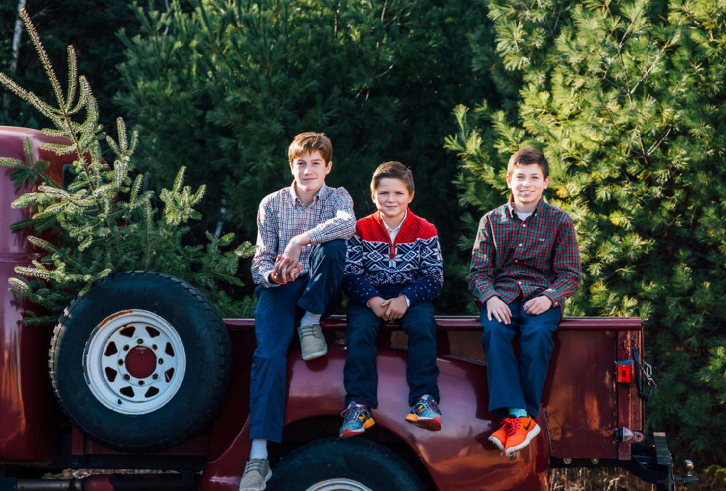 sibling photo ideas brothers truck bed