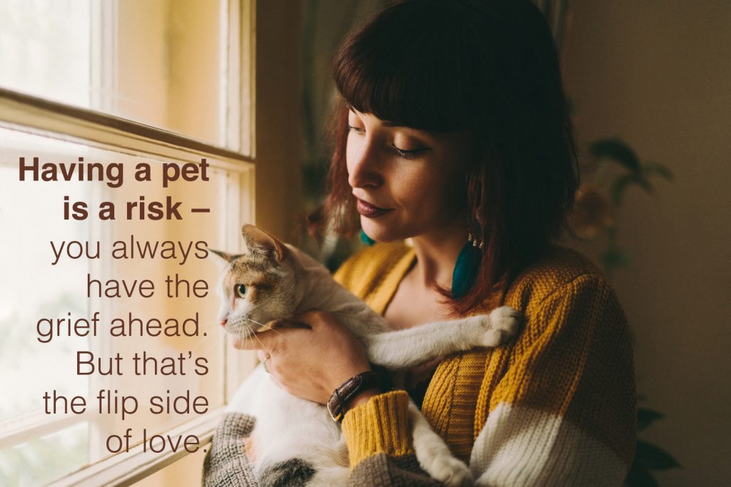 Young woman with cat staring through the window with pet loss quotes overlay.