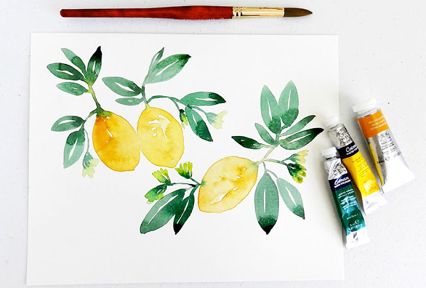 plant wall art fruit painting