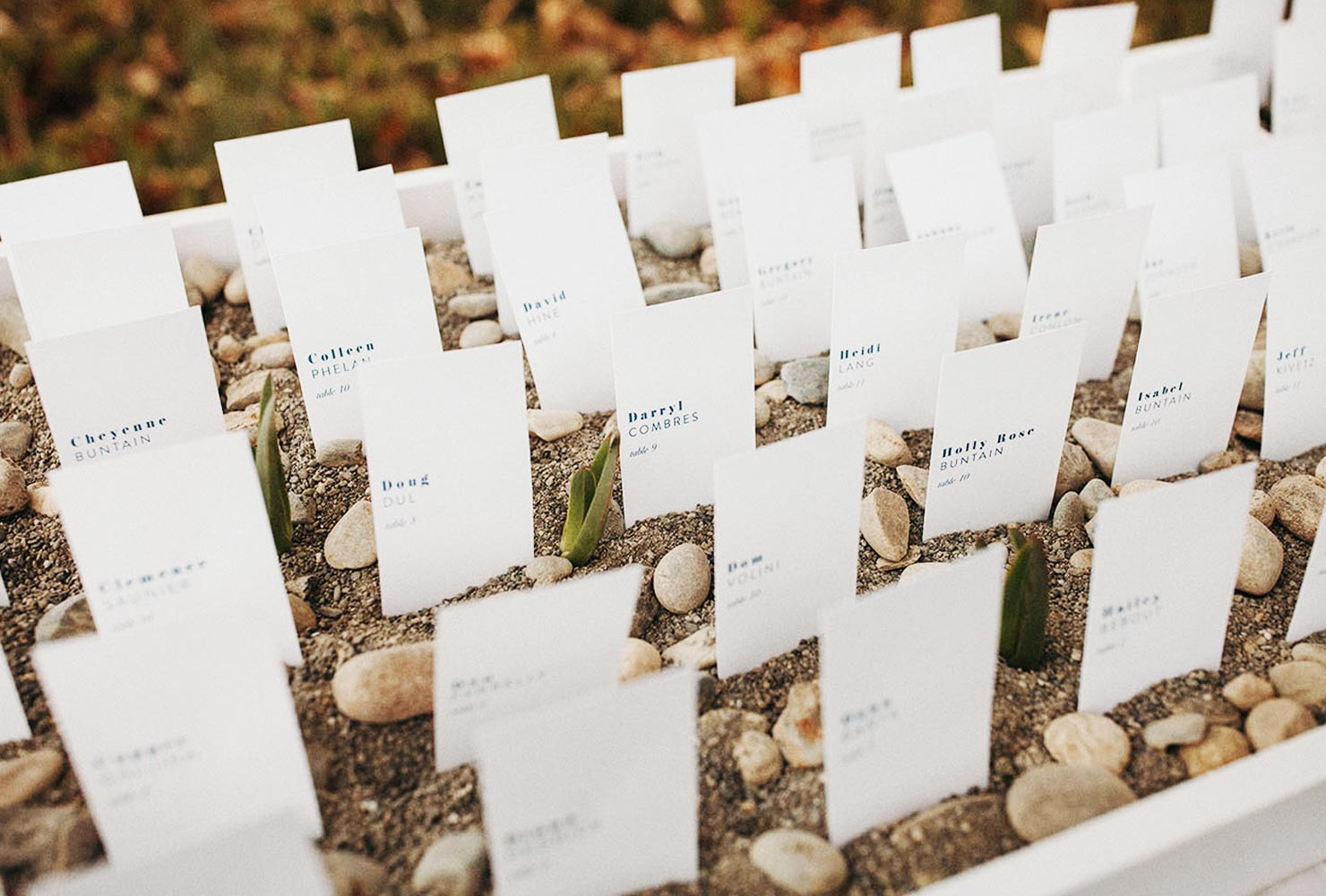 wedding place card ideas garden of guests