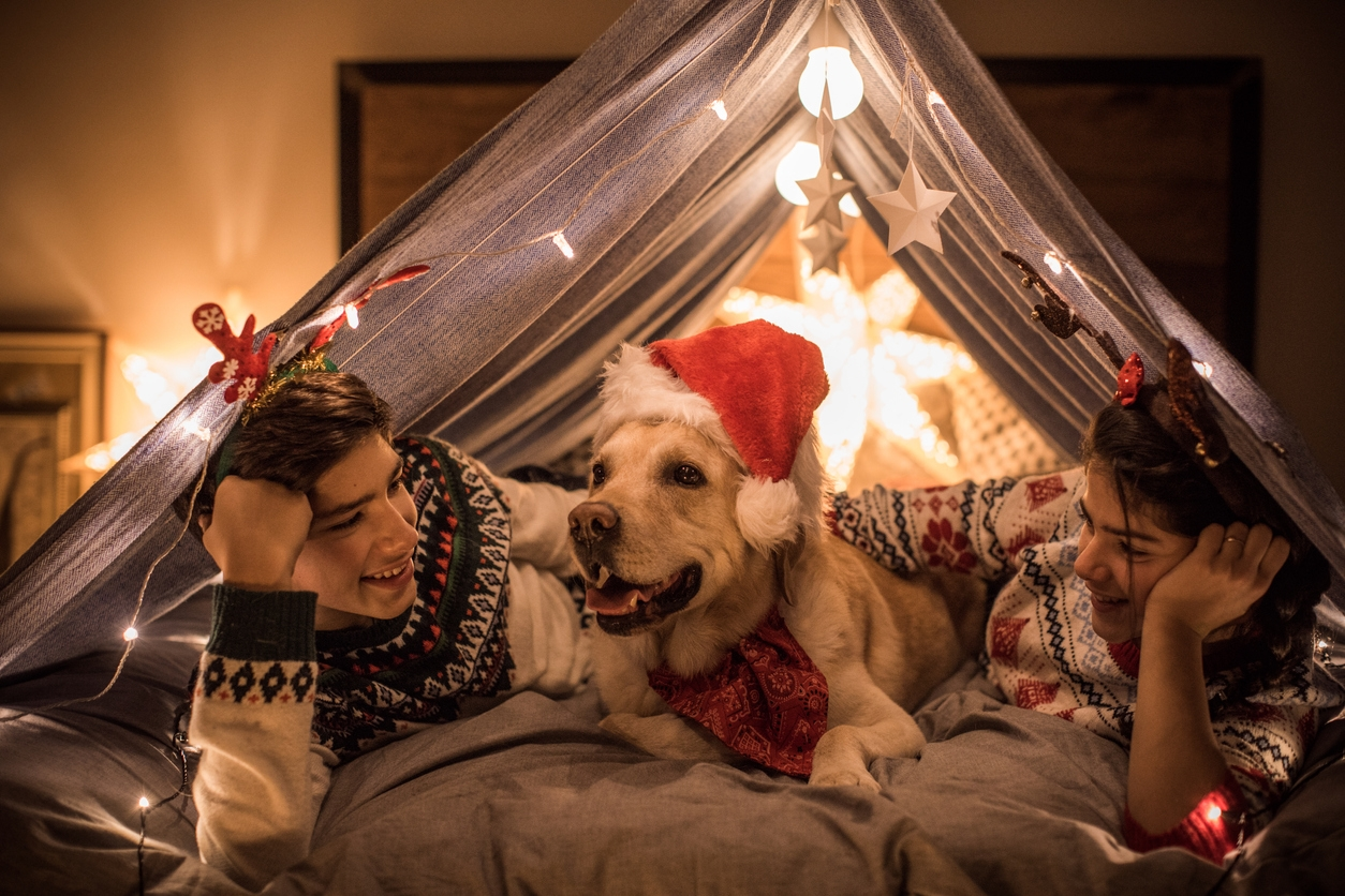 Brother and sister playing on bed with their dog in homemade tent . It's holiday evening and they having fun with they dog.