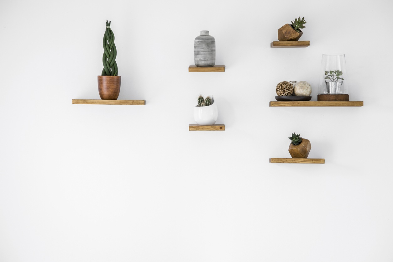 DIY plant shelves filled with cactus and succulents
