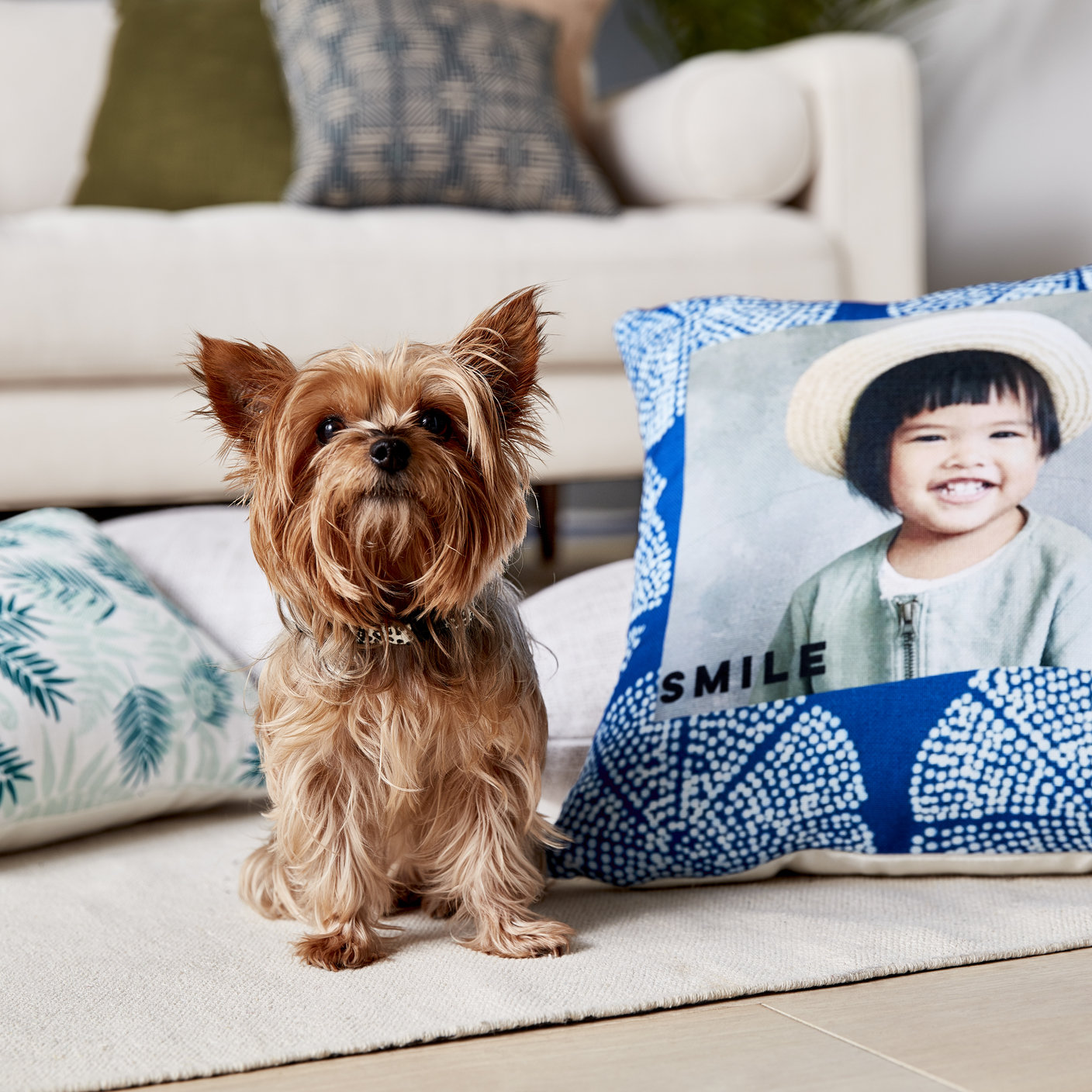 dog next to personalized pillow