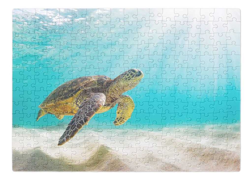 Custom photo puzzle with an animal photography design from the art library
